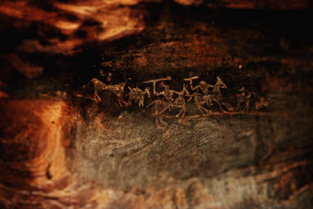 Prehistoric rock art at Bhim Betka Caves | Photo: Abhijeet Dutta